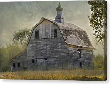 Rural America IIi Canvas Print by Christine Belt