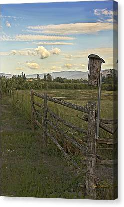 Rural Birdhouse On Fence Canvas Print by Mick Anderson