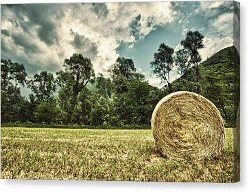 Rural Landscape With Hay Bale Canvas Print by sisifo73photography by Marco Romani