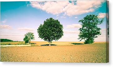 Rural Scene Canvas Print by Tom Gowanlock