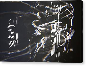 Rushing Headlong Canvas Print by Cheri Randolph