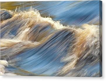 Rushing Waters Canvas Print by Carolyn Marshall