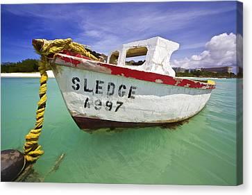 Rustic Fishing Boat Of Aruba II Canvas Print by David Letts