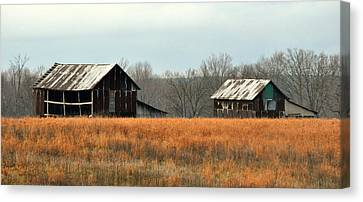 Rustic Illinois Canvas Print by Marty Koch