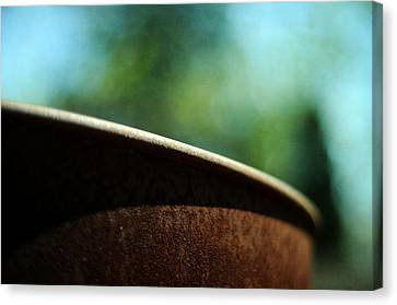 Rustic Canvas Print by Rebecca Sherman