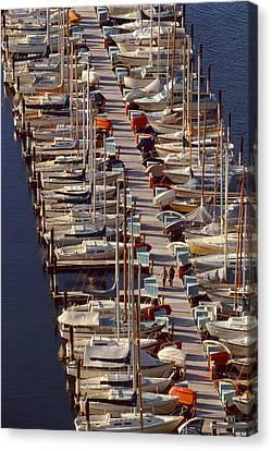 Sailboats At Moorage Canvas Print by Harald Sund