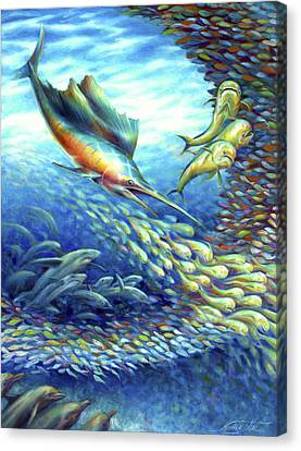 Sailfish Plunders Baitball II - Sharks And Dolphin Fish Canvas Print by Nancy Tilles