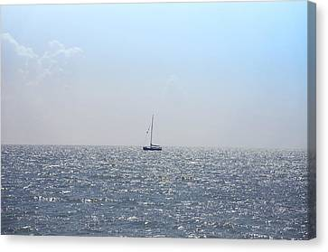 Sailing On Canvas Print by Bill Cannon