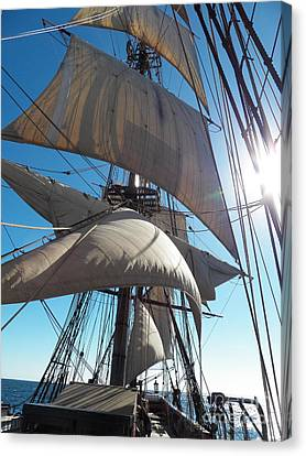 Sails And Sunshine Canvas Print by L Jaye  Bell