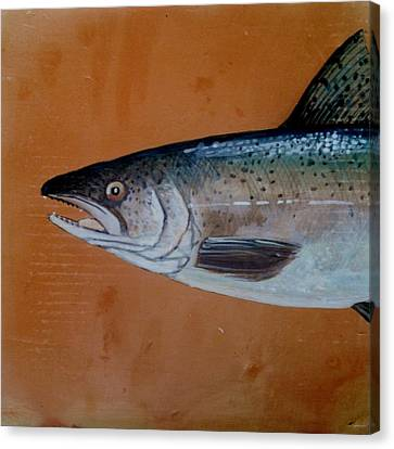 Salmon 1 Canvas Print by Andrew Drozdowicz