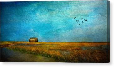 Salt Marsh Canvas Print by Michael Petrizzo
