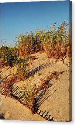 Sand Dune II - Jersey Shore Canvas Print by Angie Tirado