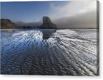Sand Sculptures Canvas Print by Debra and Dave Vanderlaan