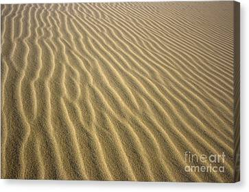 Sandhills Canvas Print by MotHaiBaPhoto Prints