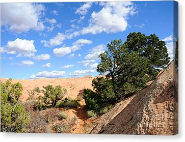 Sandstone Sky Canvas Print by Gary Whitton