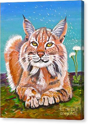 Sassy Lynx And Dandelions Canvas Print by Phyllis Kaltenbach