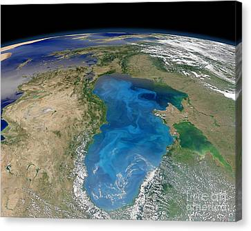 Satellite View Of Swirling Blue Canvas Print by Stocktrek Images