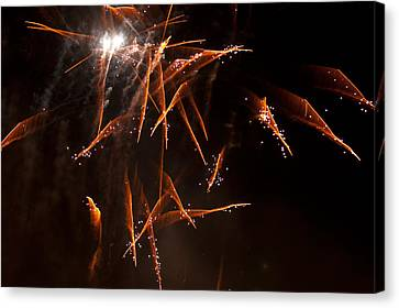 Scatter Shot Canvas Print by Paul Mangold