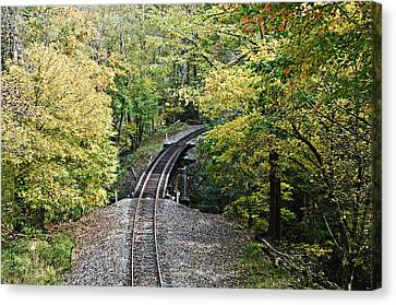 Scenic Railway Tracks Canvas Print by Susan Leggett