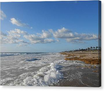 Sea And Sky Canvas Print by Sheila Silverstein