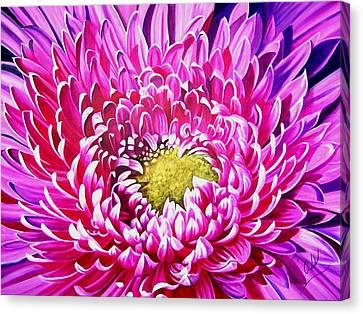 Sea Of Petals Canvas Print by Karen Casciani