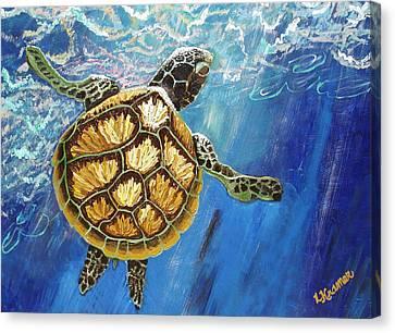 Sea Turtle Takes A Breath Canvas Print by Lisa Kramer