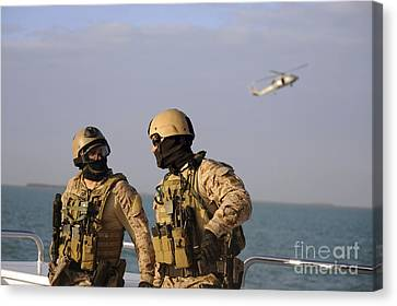Seals Aboard A Rigid-hull Inflatable Canvas Print by Stocktrek Images