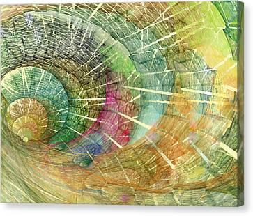Season Of The Shell Canvas Print by Betsy C Knapp