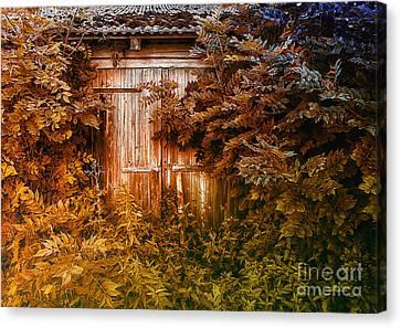 Secret Door Canvas Print by Jutta Maria Pusl