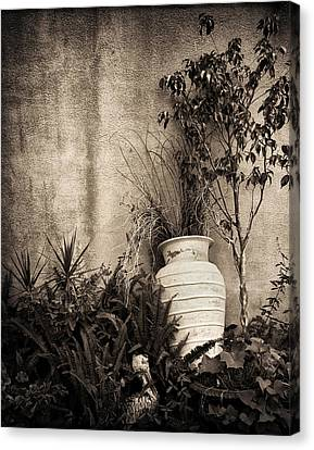 Secret Garden Canvas Print by Mario Celzner