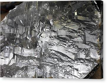 Selenite Mineral Sample Canvas Print by Dirk Wiersma