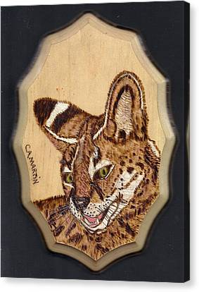 Serval Canvas Print by Clarence Butch Martin