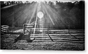 Shadow Canvas Print by Darrin Doss