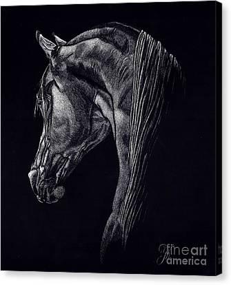Shadow Canvas Print by Yenni Harrison