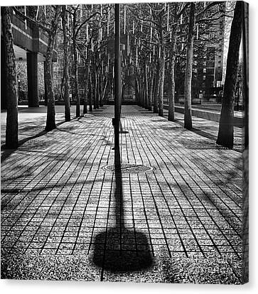Shadows On The Ground Canvas Print by John Farnan