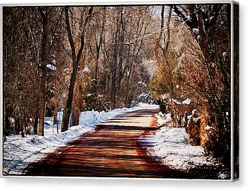 Shadowy Path Canvas Print by Lisa  Spencer