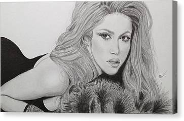 Shakira Canvas Print by Andrew Nelson