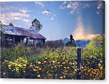 Shed In Blue Sky Canvas Print by Walt Jackson