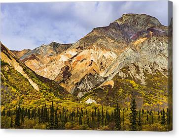 Sheep Mountain Along Glenn Highway Canvas Print by Yves Marcoux