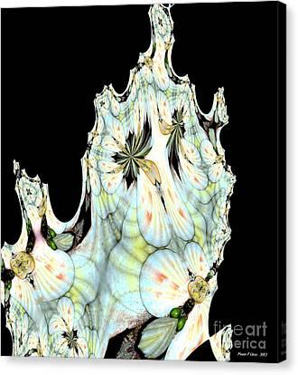 Shell Art 1 Canvas Print by Maria Urso