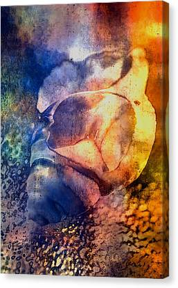Shell Canvas Print by Mauro Celotti