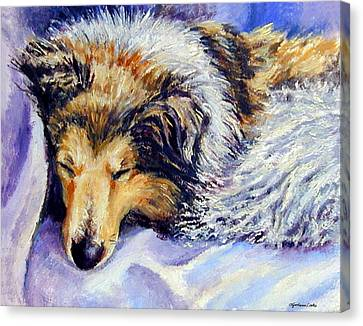 Sheltie Napster Canvas Print by Lyn Cook