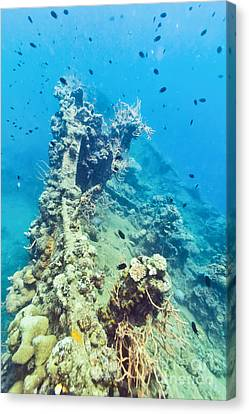 Shipwreck  Canvas Print by MotHaiBaPhoto Prints