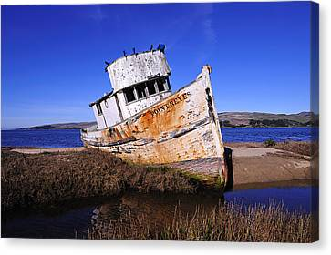 Shipwrecked In Inverness Canvas Print by Richard Leon