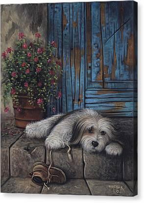 Shoelaces Canvas Print by Sergei Kasaz