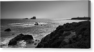 Shoreline Near Piedras Blancas I Canvas Print by Steven Ainsworth