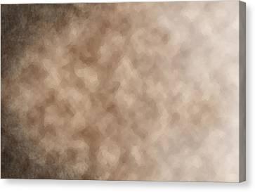 Shrouded Mystery Canvas Print by Christopher Gaston