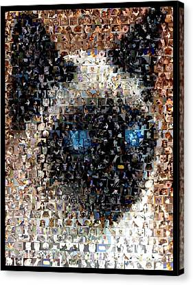 Siamese Cat Mosaic Canvas Print by Paul Van Scott