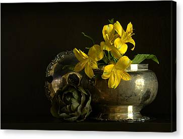 Silver And Golden Canvas Print by Cindy Rubin