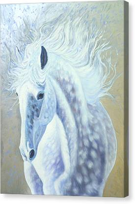 Silver Mare Canvas Print by Gill Bustamante